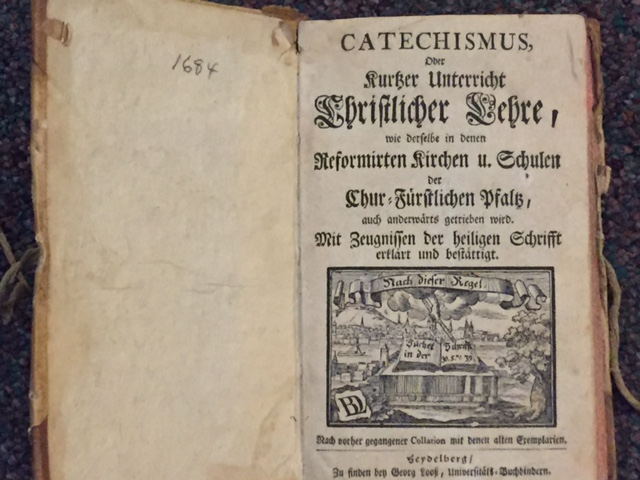 What's the Story Behind the Language Schism?