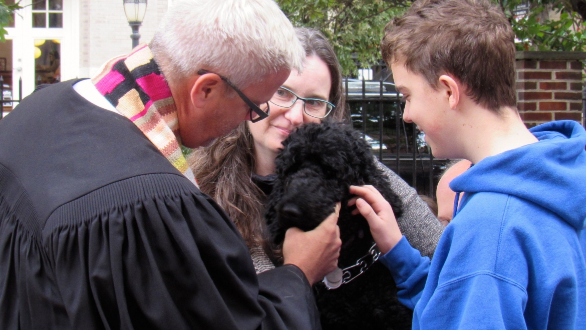 Blessing of the Animals and Service Fair for Homeless Pets — Sun., 10.15