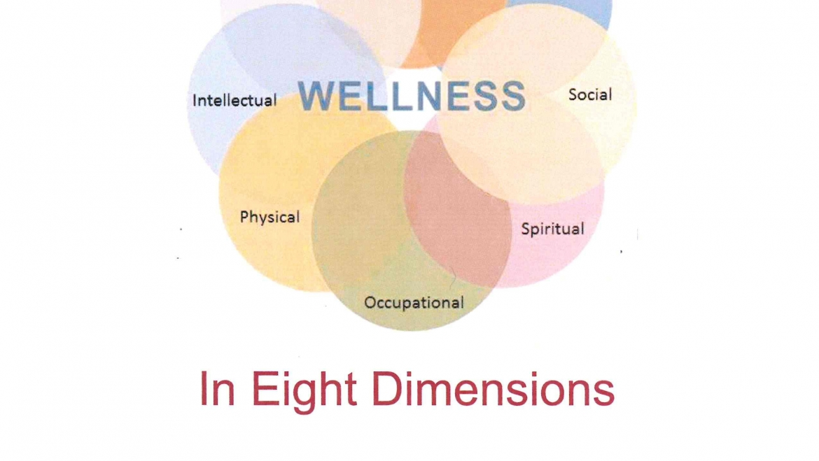 Wellness Workshop with Fay Reiter, Feb 17, after Worship